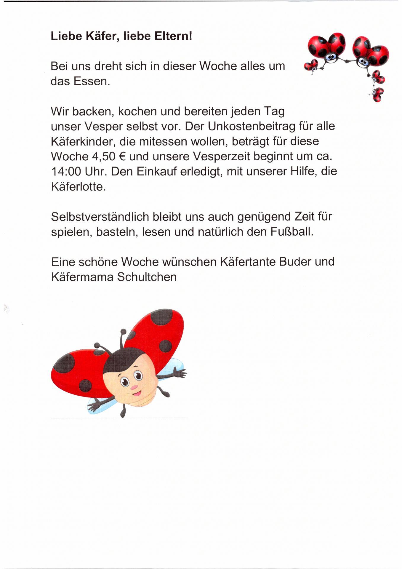 Käfer Wochenplan