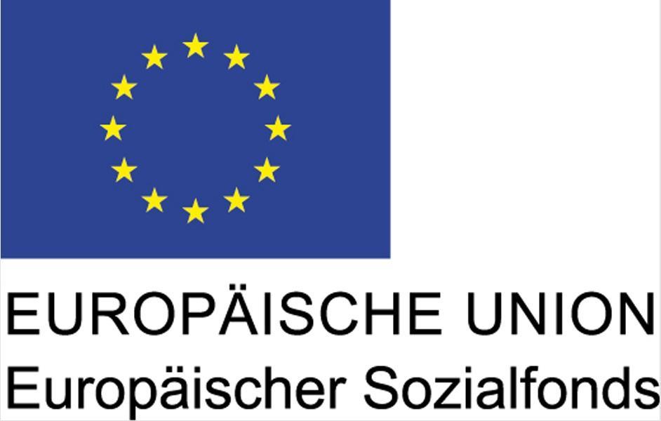 EU-Logo 3