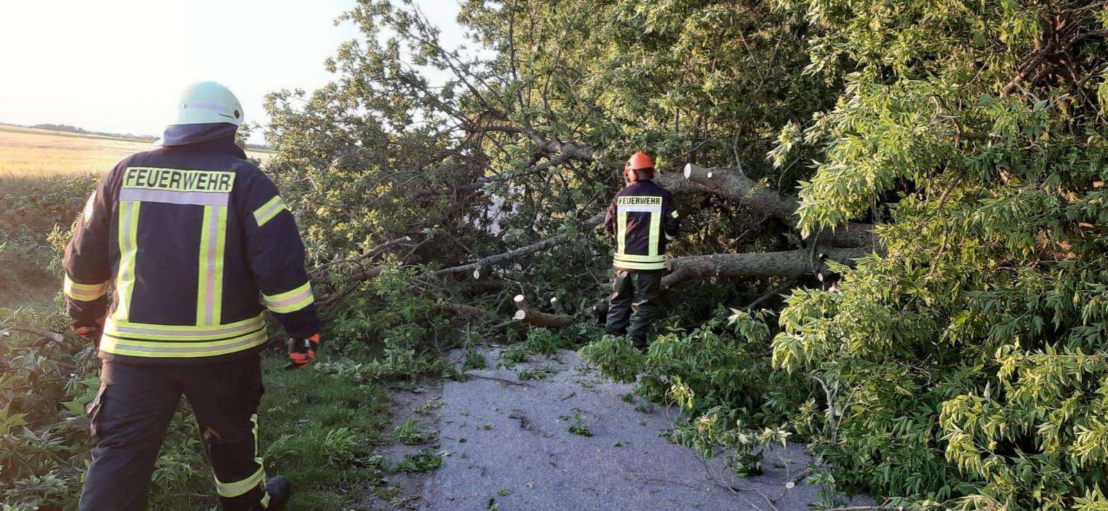 Einsatz Beseitigung Sturmschäden 2020