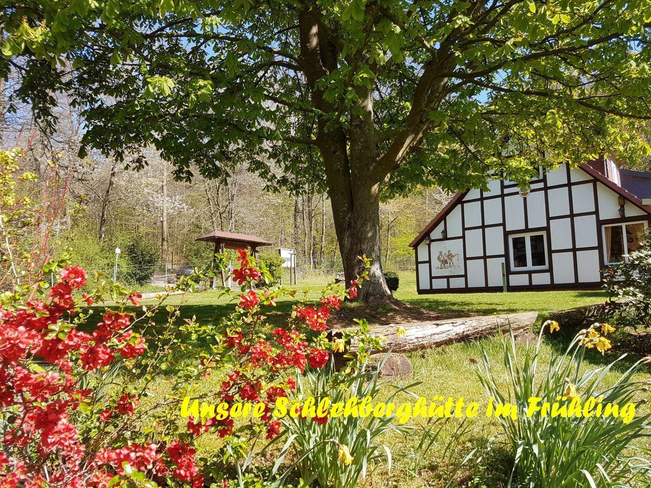 Hütte im FrühlingA