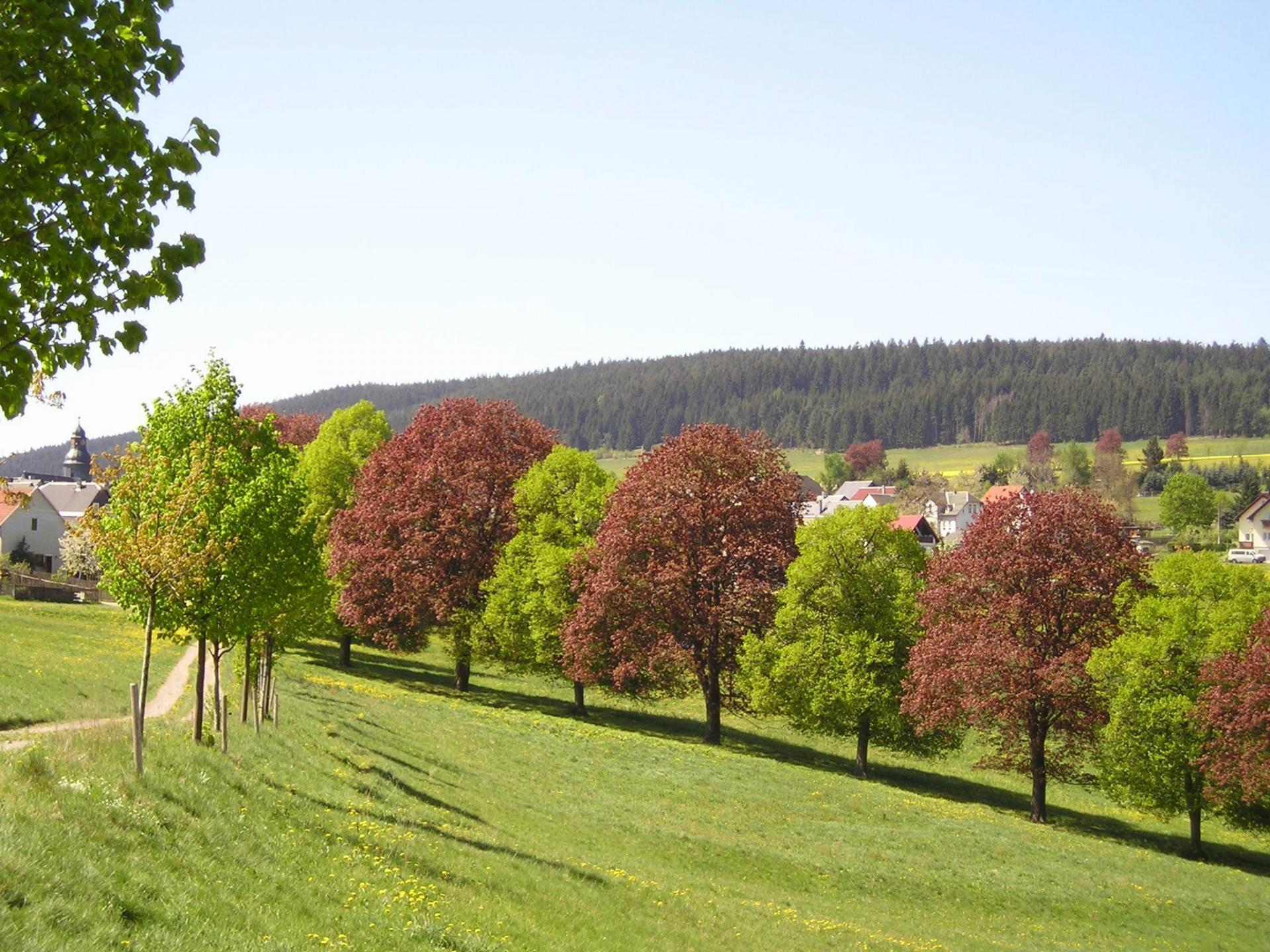 Herschdorf Ansicht Blick von der Grüne heute
