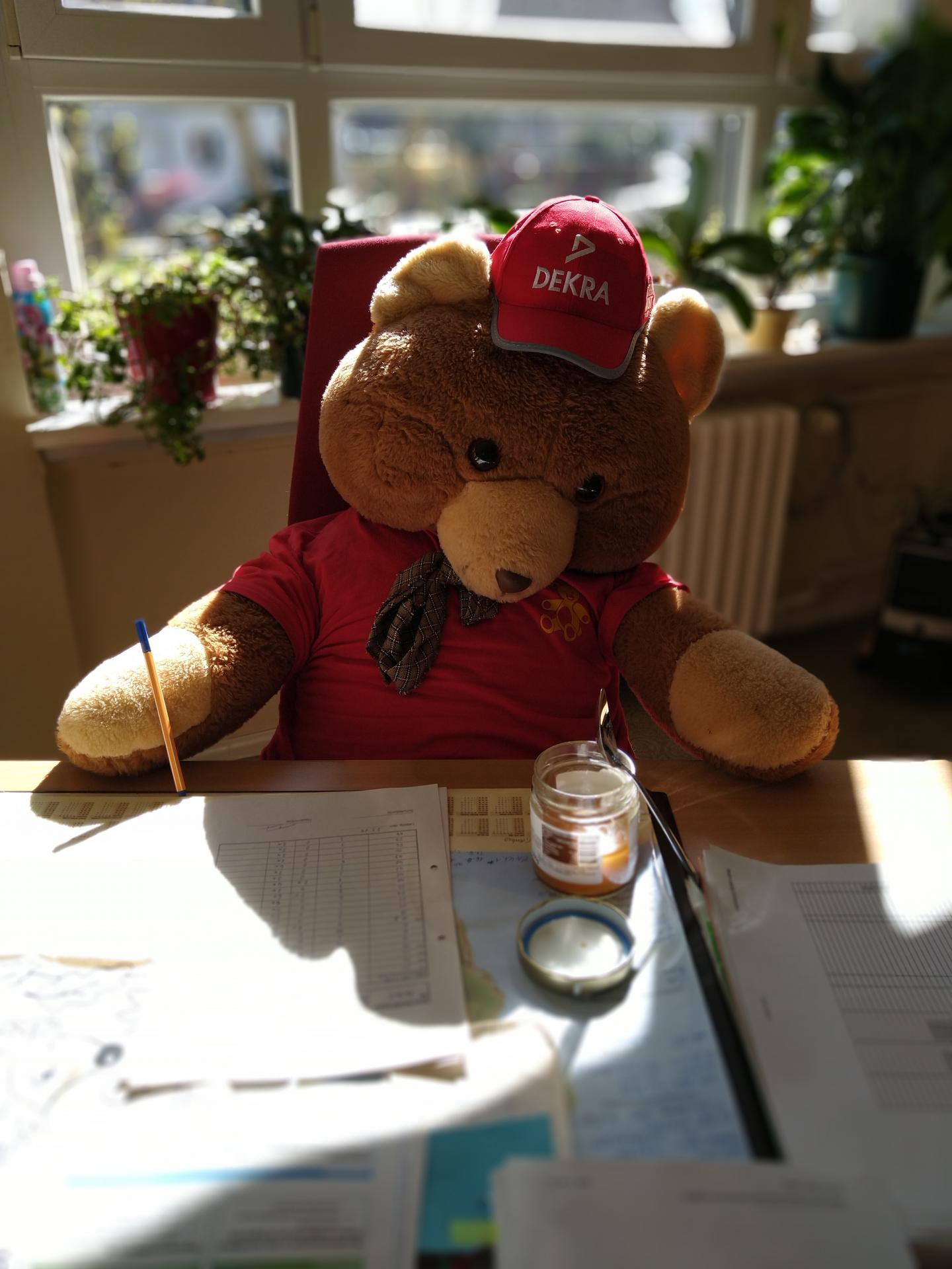 Karli am Schreibtisch