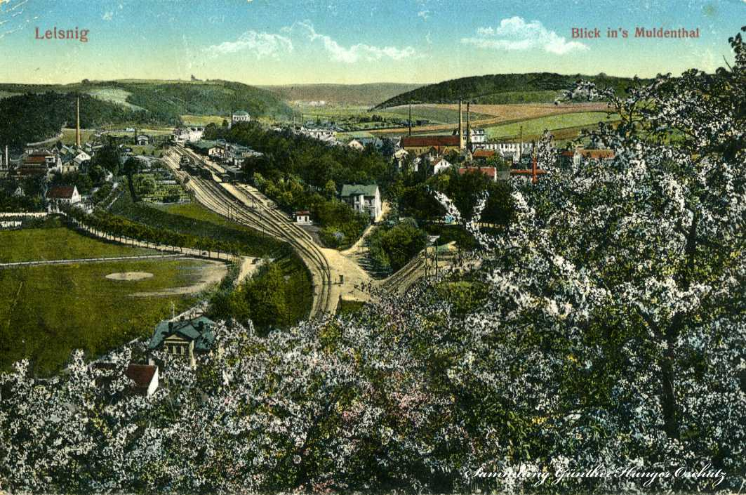 Leisnig Blick in´s Muldenthal