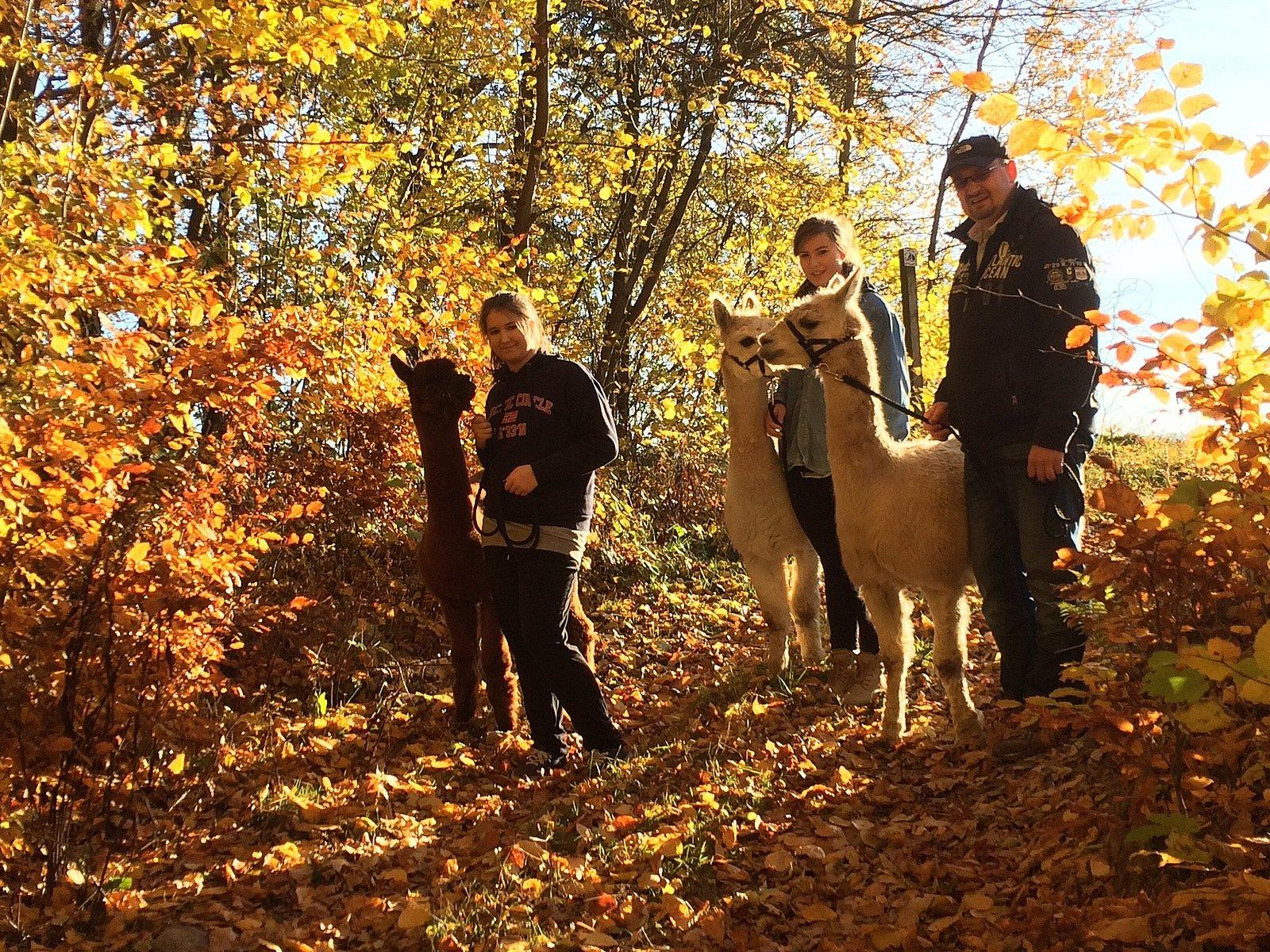 Familienwanderung Foto:Graceland Alpacas Wehrsdorf