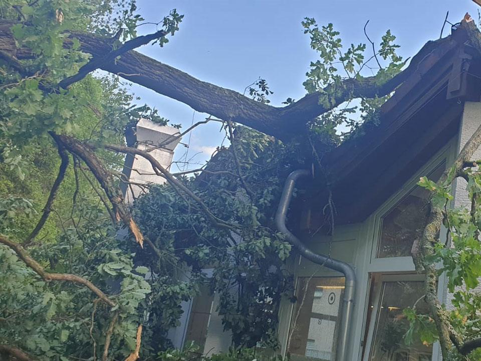12/2020 Hilfeleistung - Baum auf Gebäude