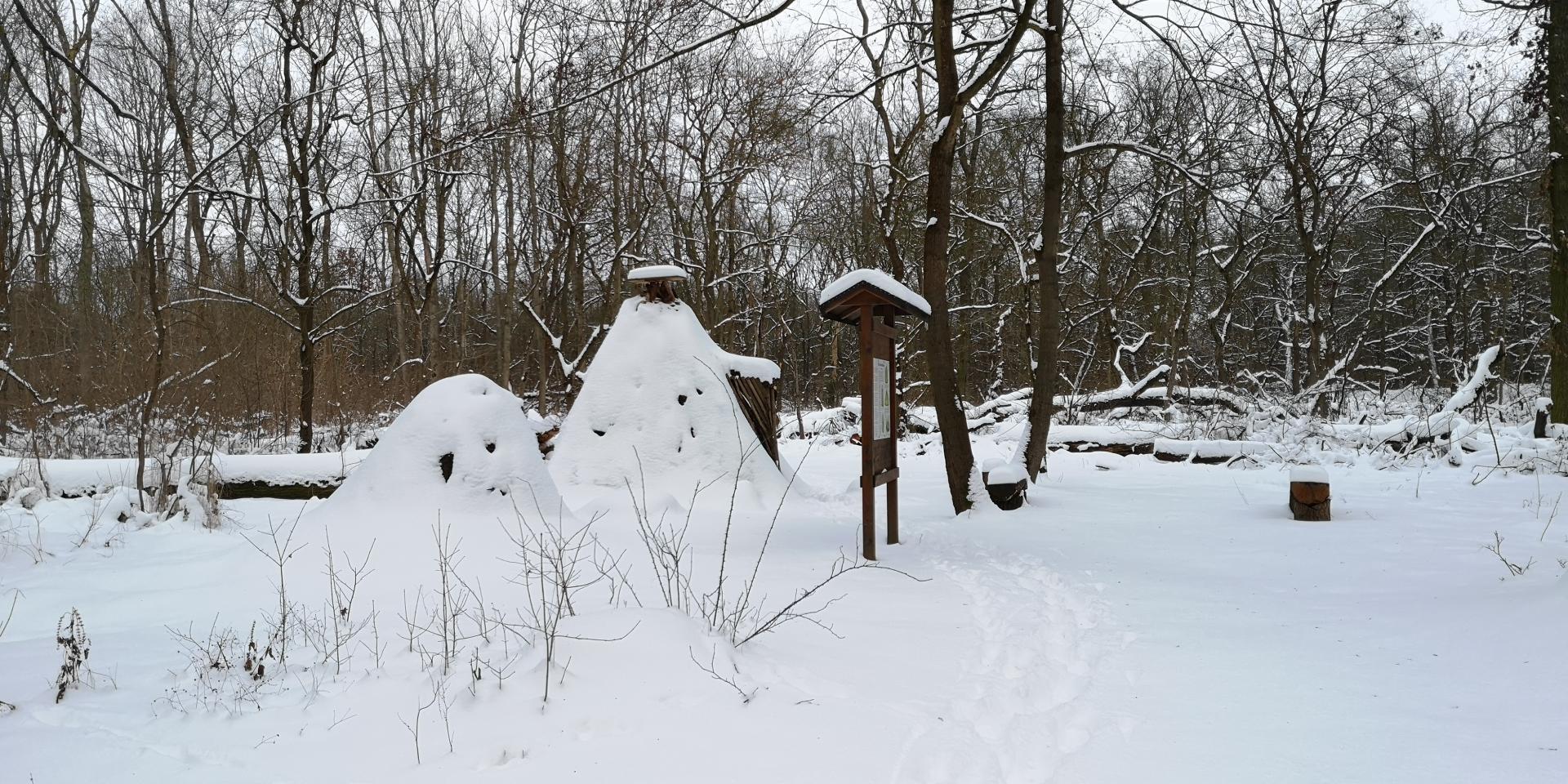 Köhlerhütte wurde zum Iglu