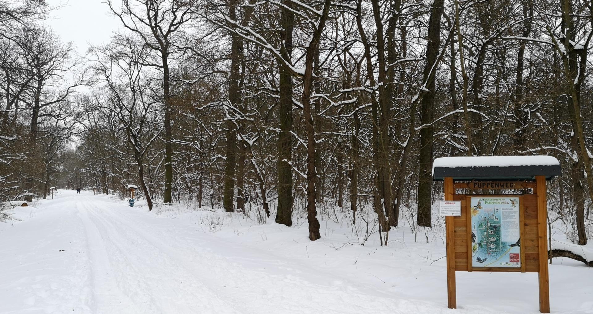 Winterlicher Puppenweg