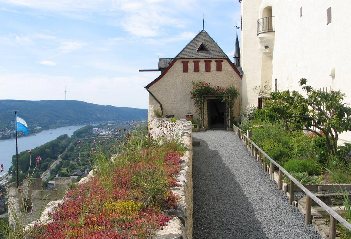 Uebersicht_Botanischer Garten des Mittelalters, Marksburg Braubach , © Dt. Burgenvereinigung e.V.