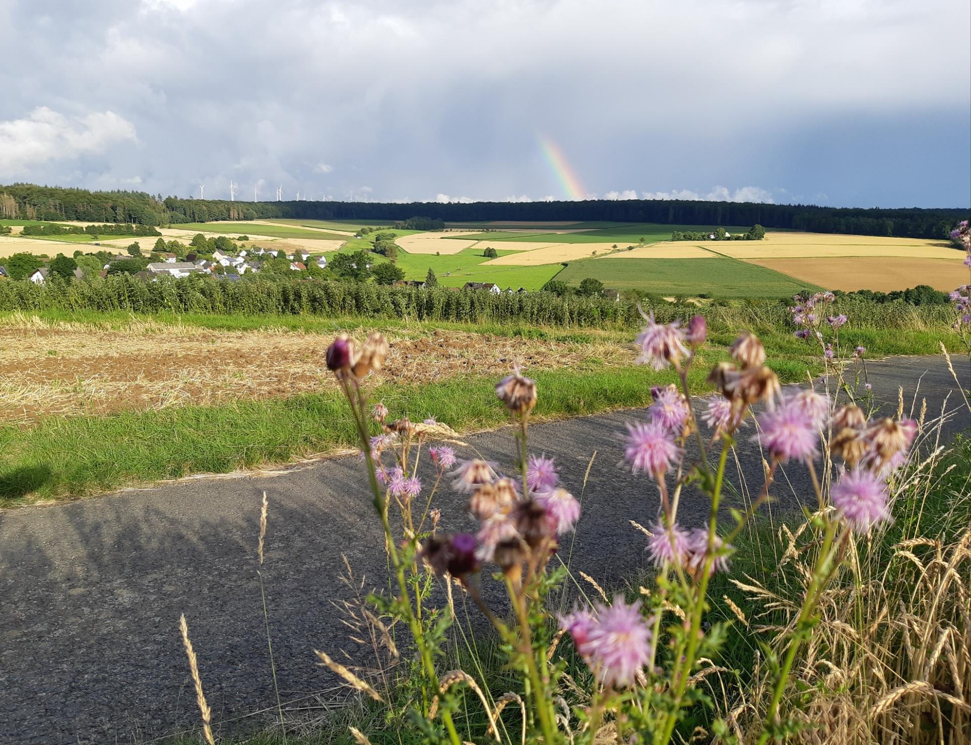 Sommer 2021; Regenbogen und Sonnenschein