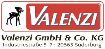 Valenzi