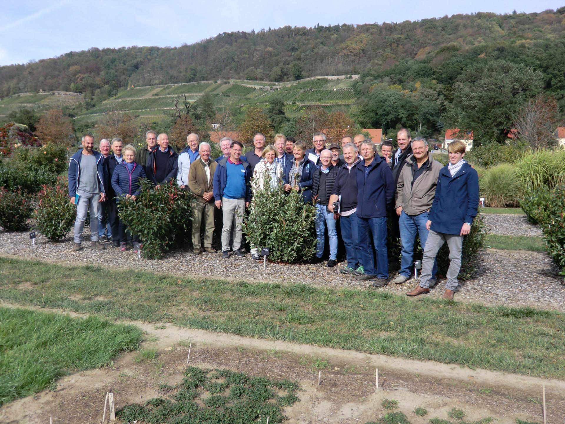 Tagung des AK Bundesgehölzsichtung 2018 in Dresden Pillnitz
