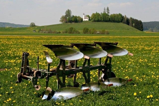Landwirtschaft auf Wiese