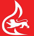 Feuerwehrsignet des Landes Baden-Württemberg
