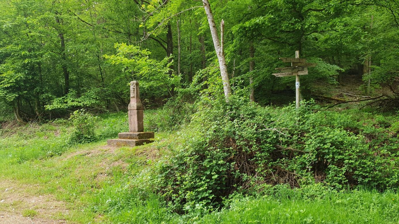 Wandern im Kondelwald