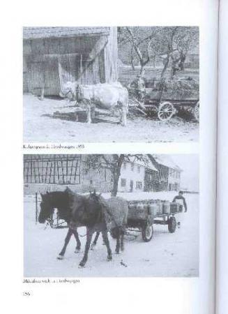Auszug Heimatbuch