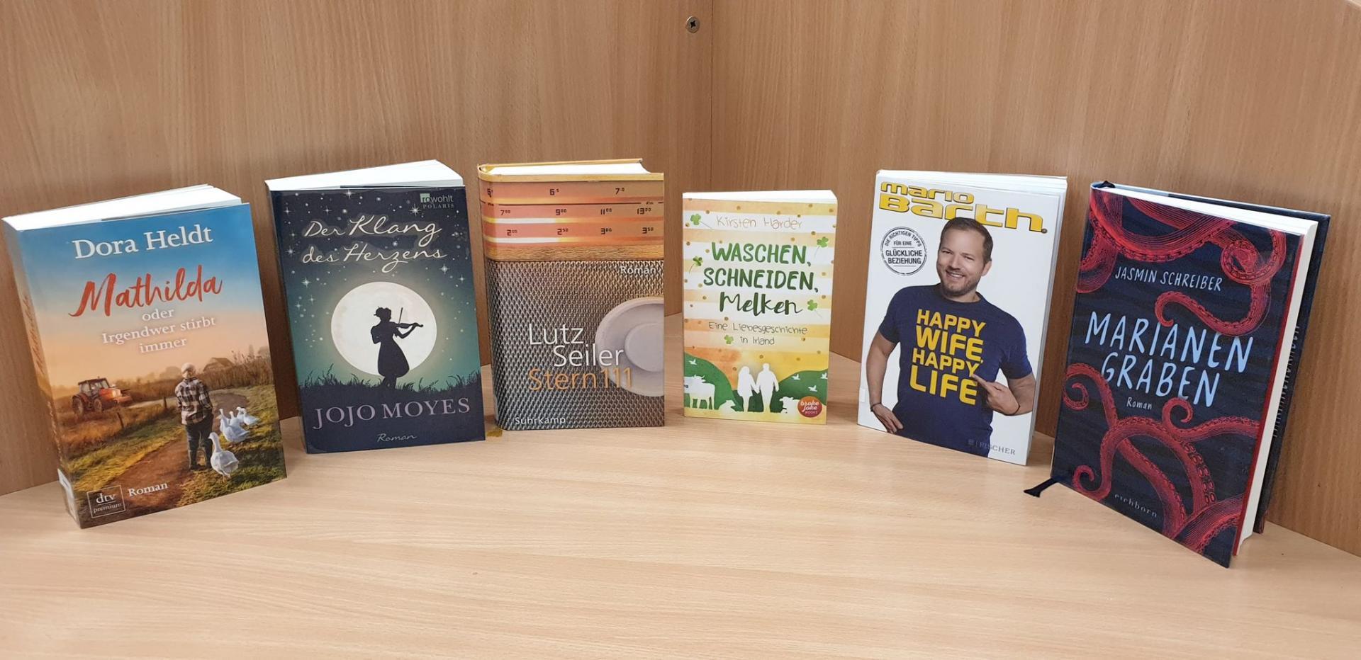 Neue Romane im Mai