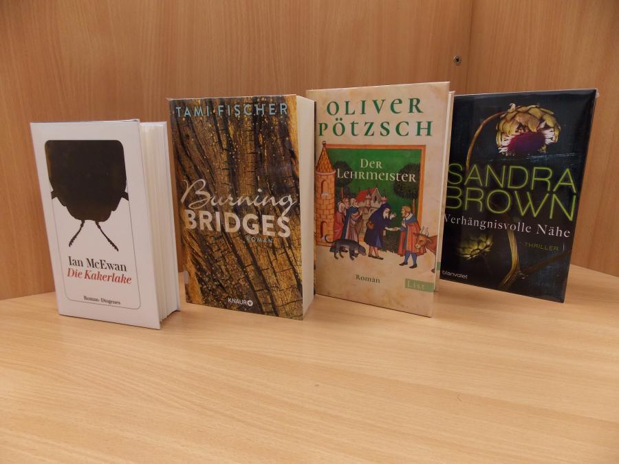 Neue Romane im Januar