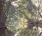 Ein See in der Marktgemeinde Haunetal