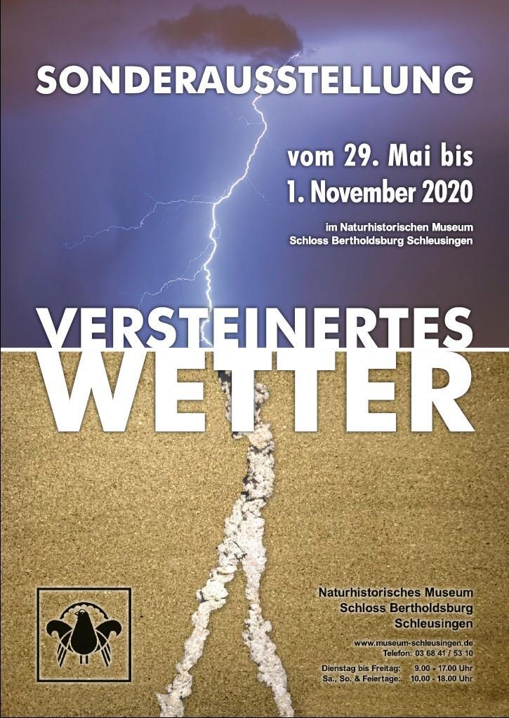 Plakat SA Versteinertes Wetter