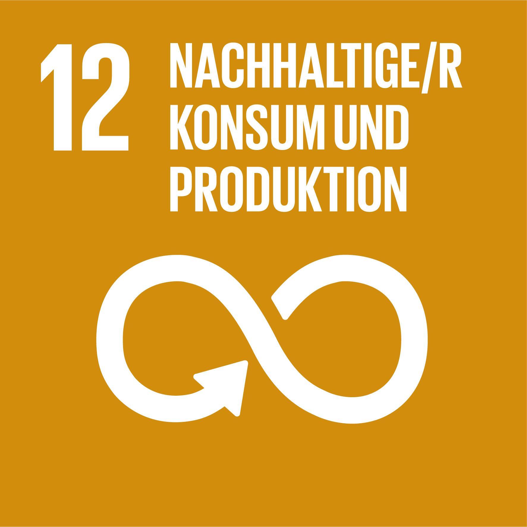 17 Nachhaltigkeitsziele - Ziel 12