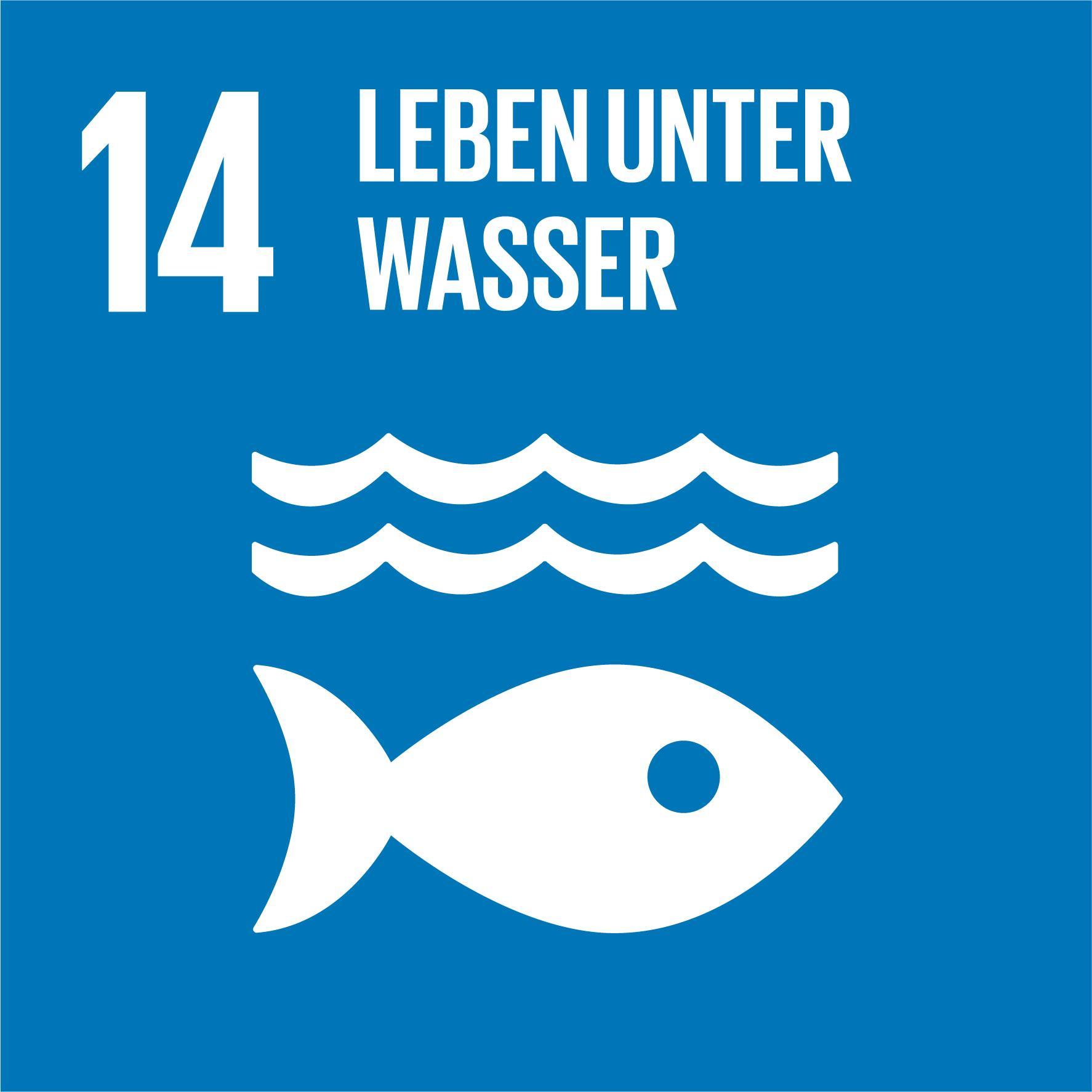 17 Nachhaltigkeitsziele - Ziel 14
