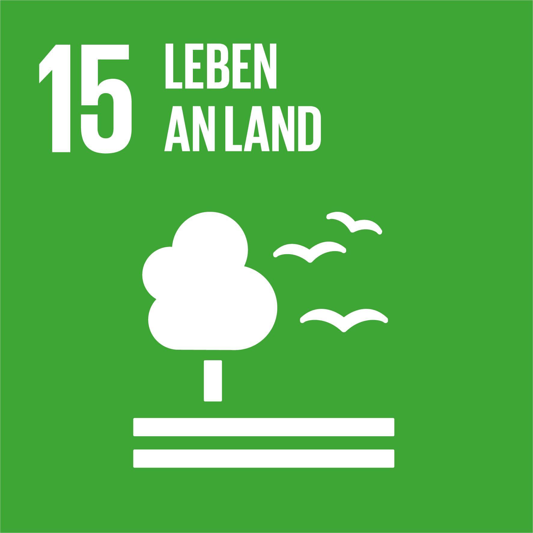 17 Nachhaltigkeitsziele - Ziel 15