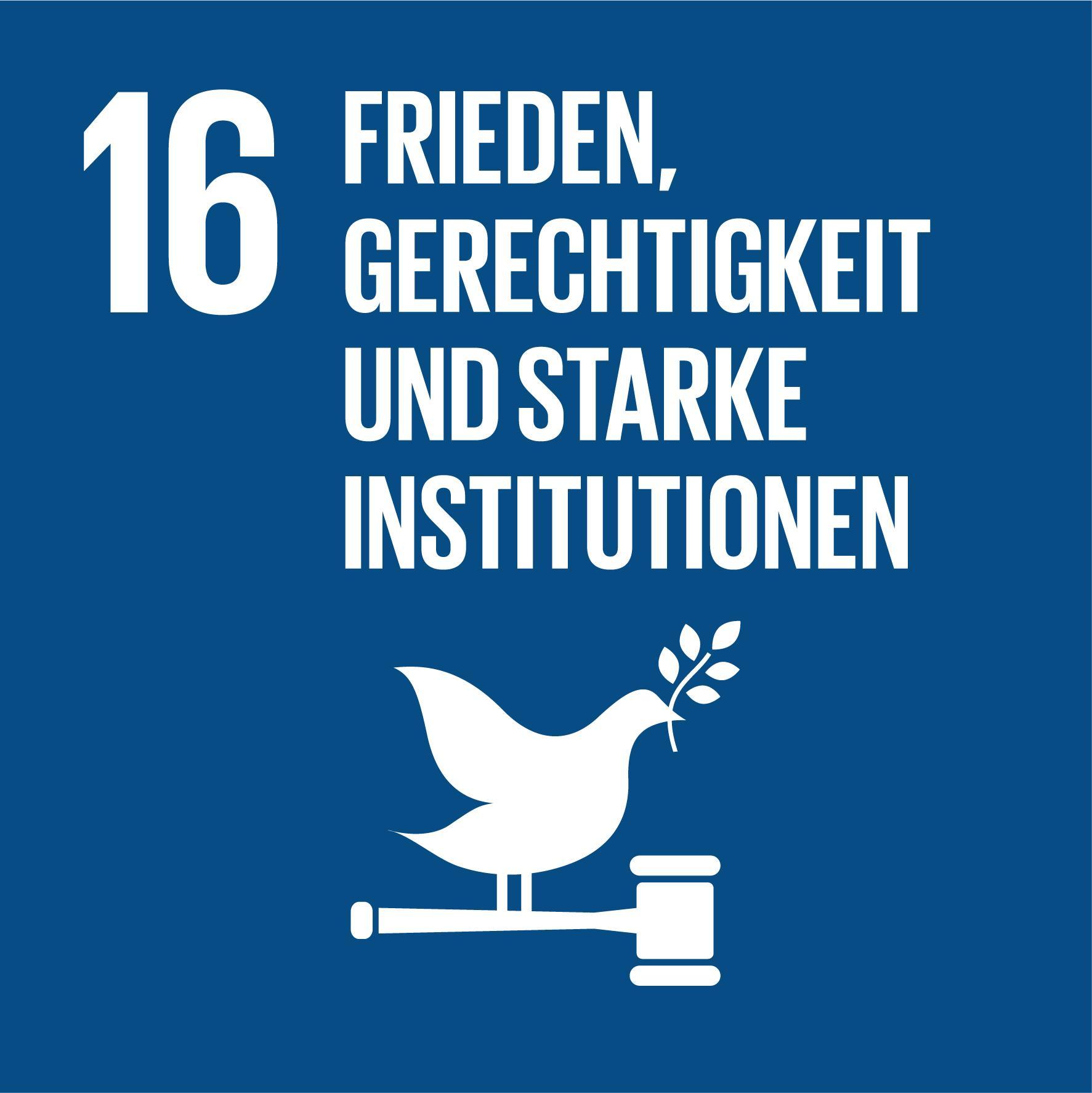 17 Nachhaltigkeitsziele - Ziel 16