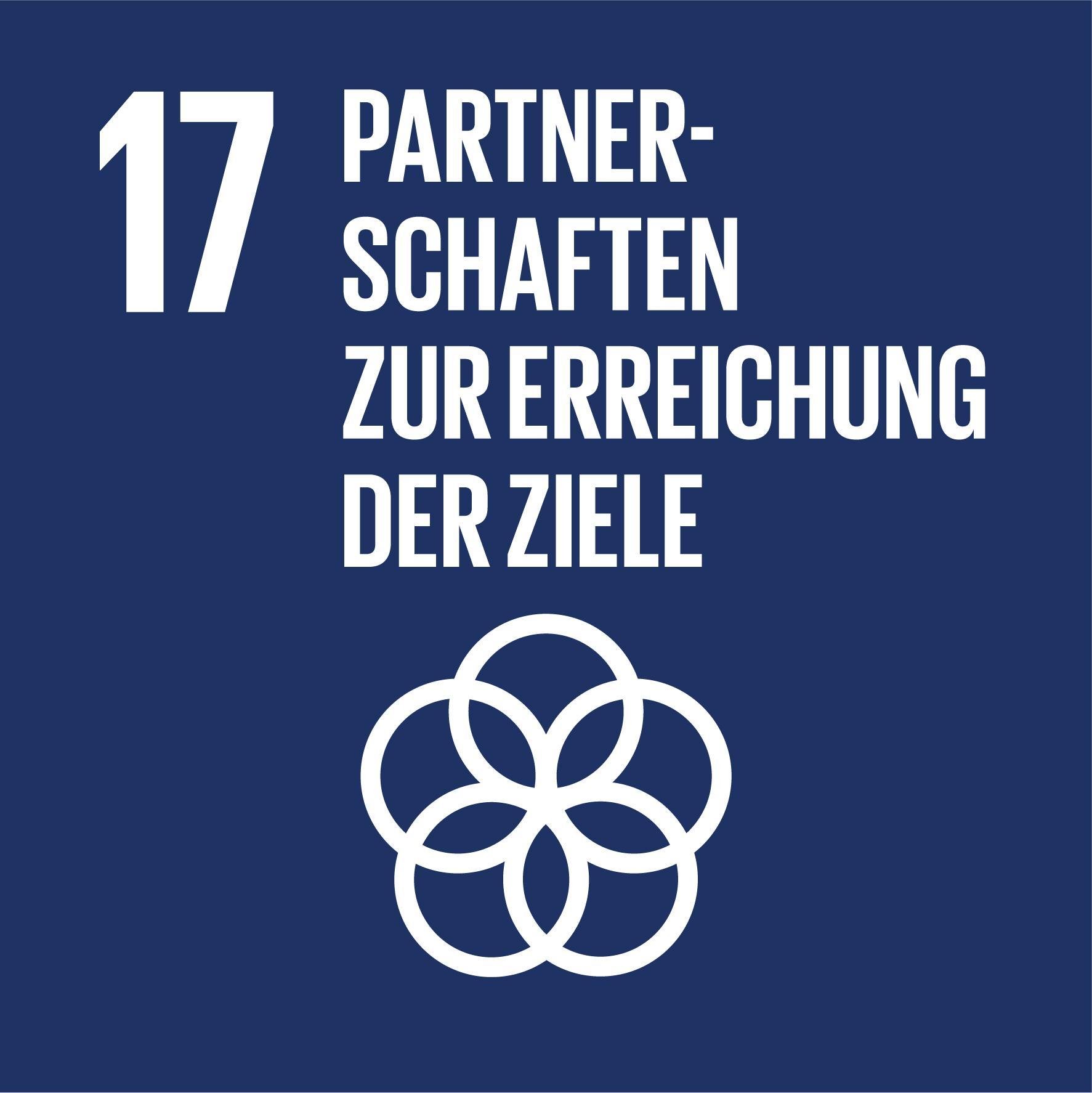 17 Nachhaltigkeitsziele - Ziel 17