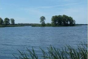 Gülper See