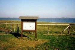 Hinweistafel am Gülper See