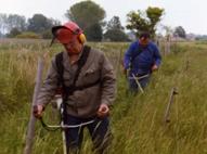 Biotop- und Landschaftspflege