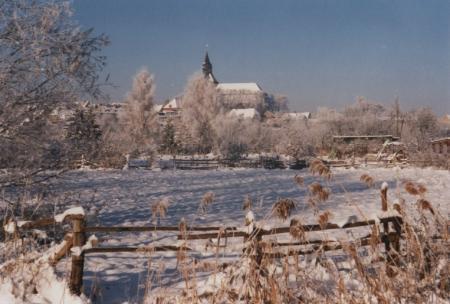 Winter Sternberg
