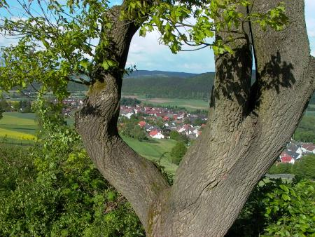 Blick vom Giegenberg