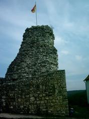 Burg Veringen