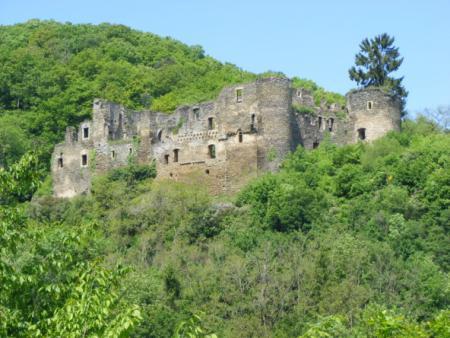 Burgruine Dalburg4.jpg