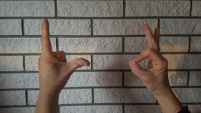 L-undO-Finger