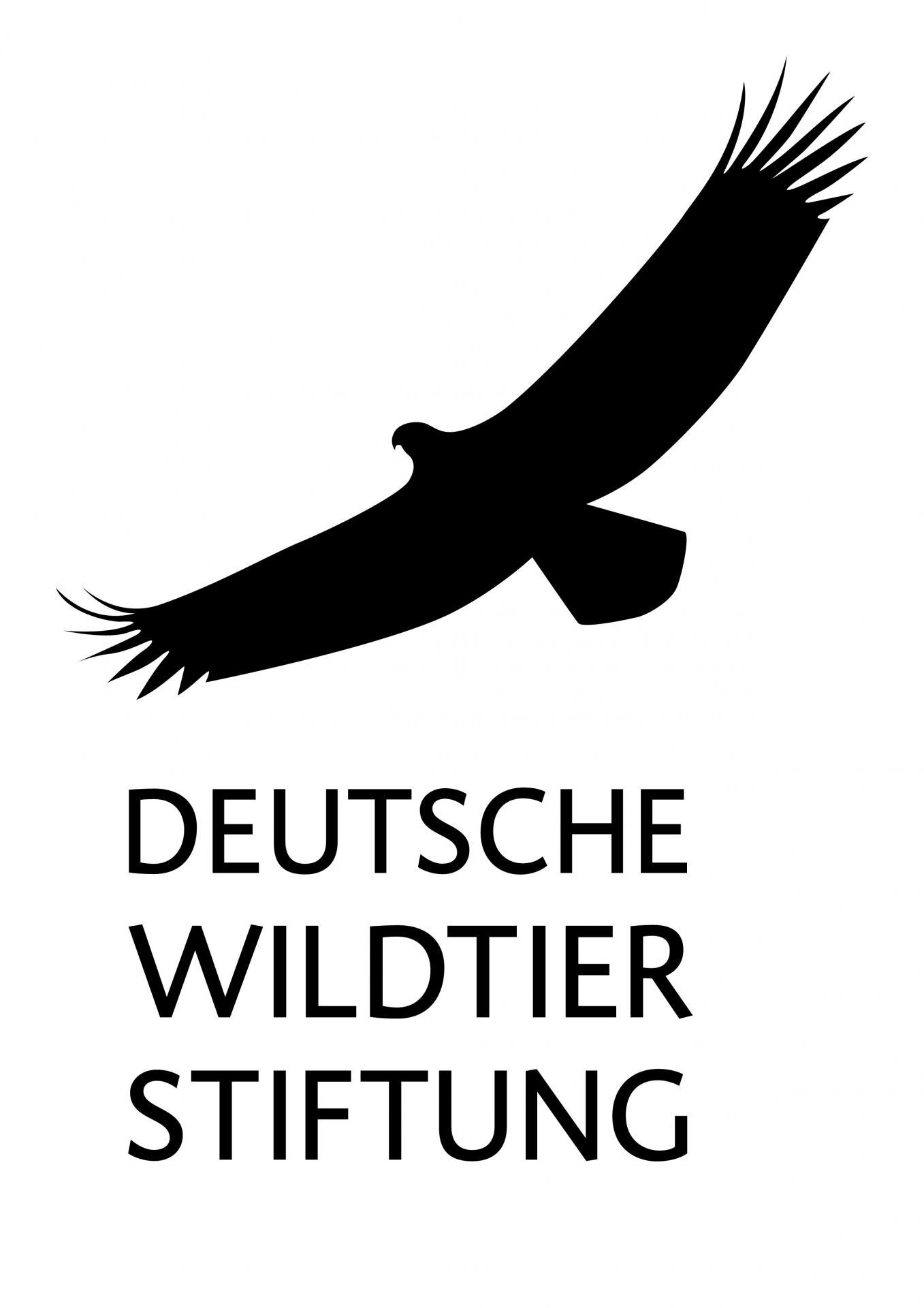 Dewist_logo