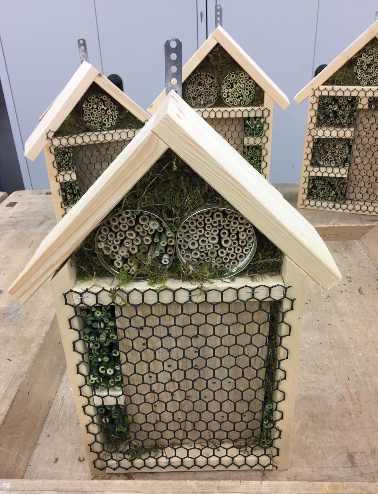 Insektenhausbau
