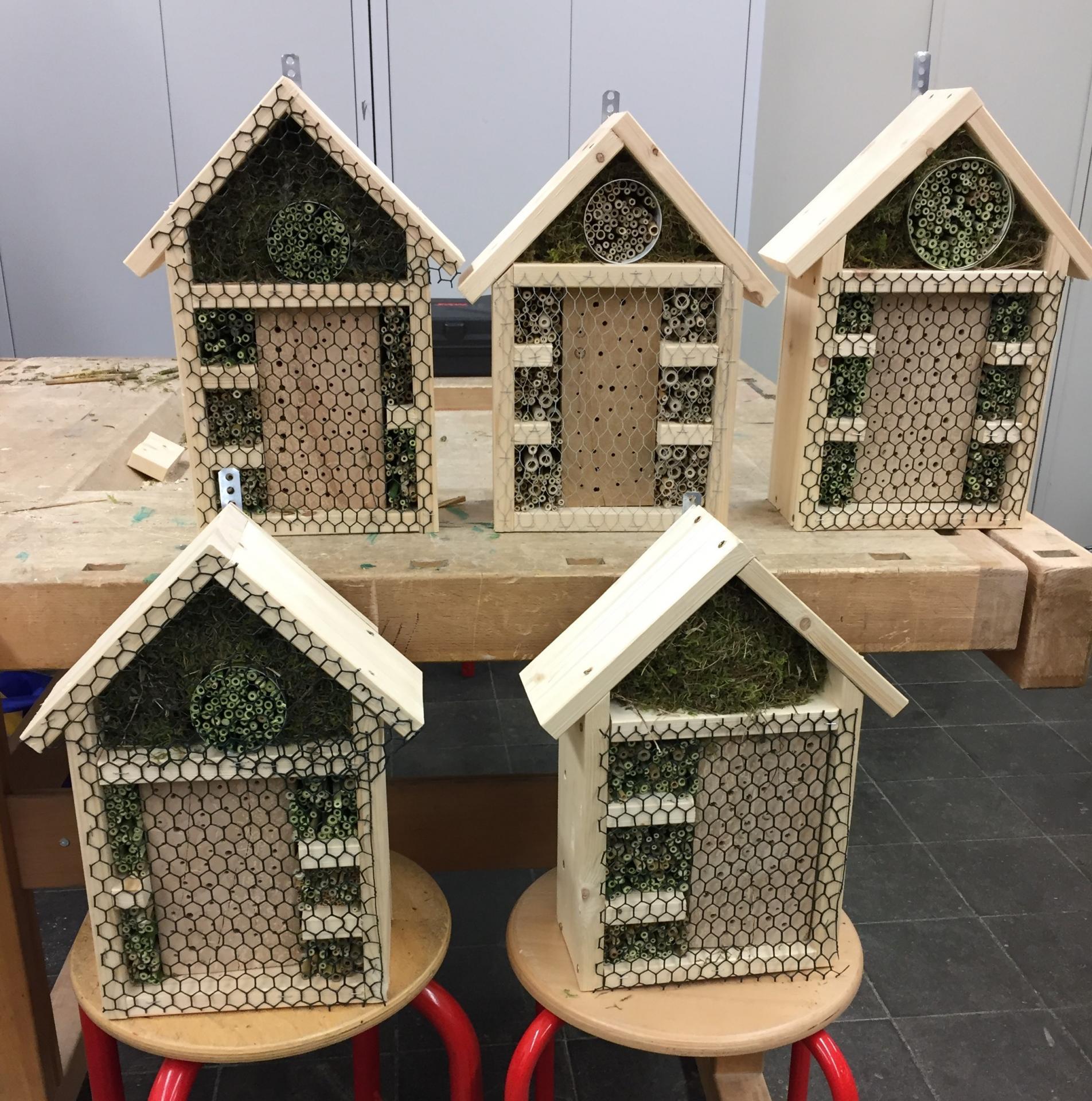 Insektenhausbau2