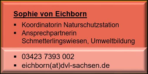 Sophie Eichborn_neu