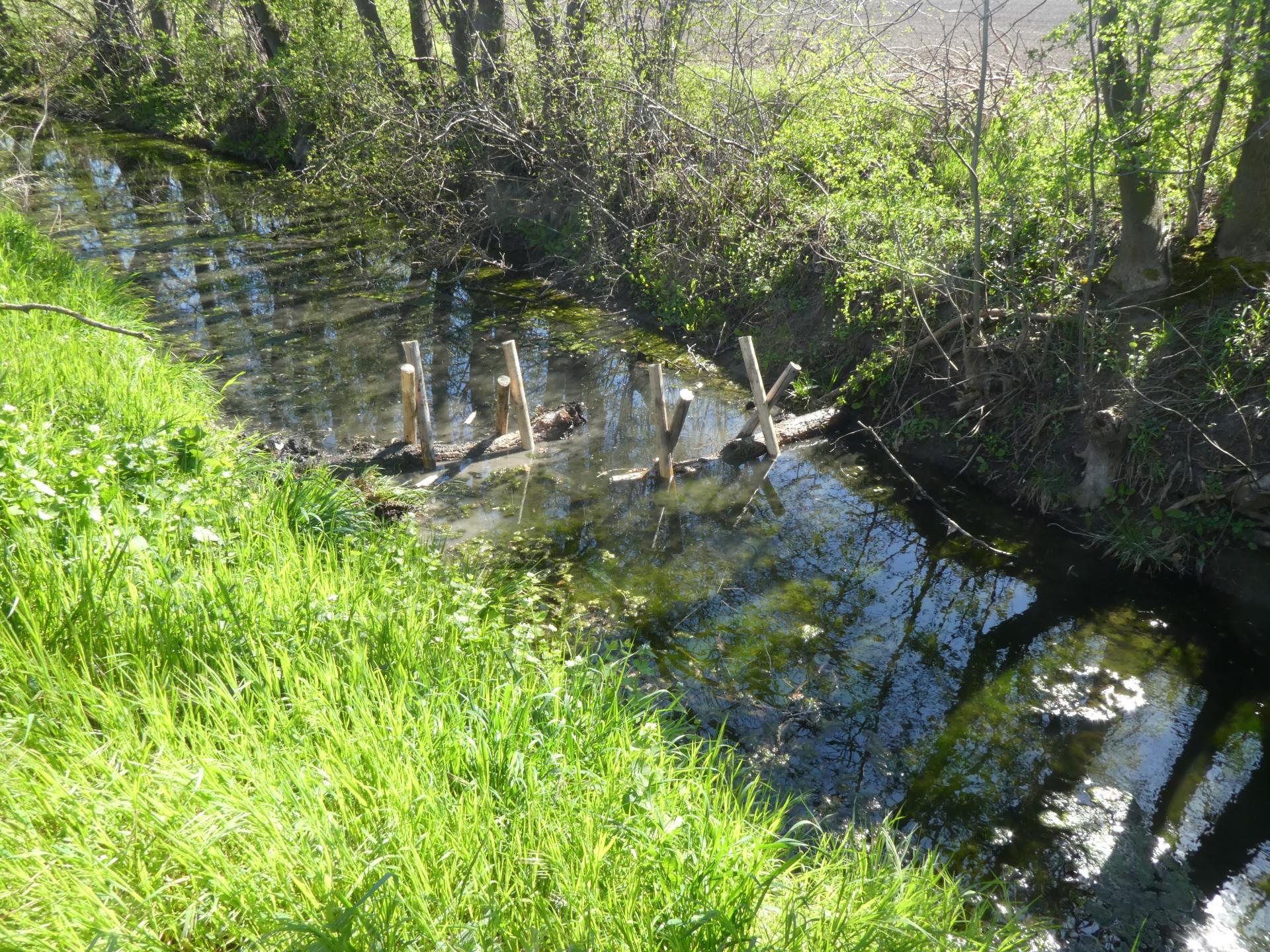 Mehrere Strömungslenker im Strickgraben