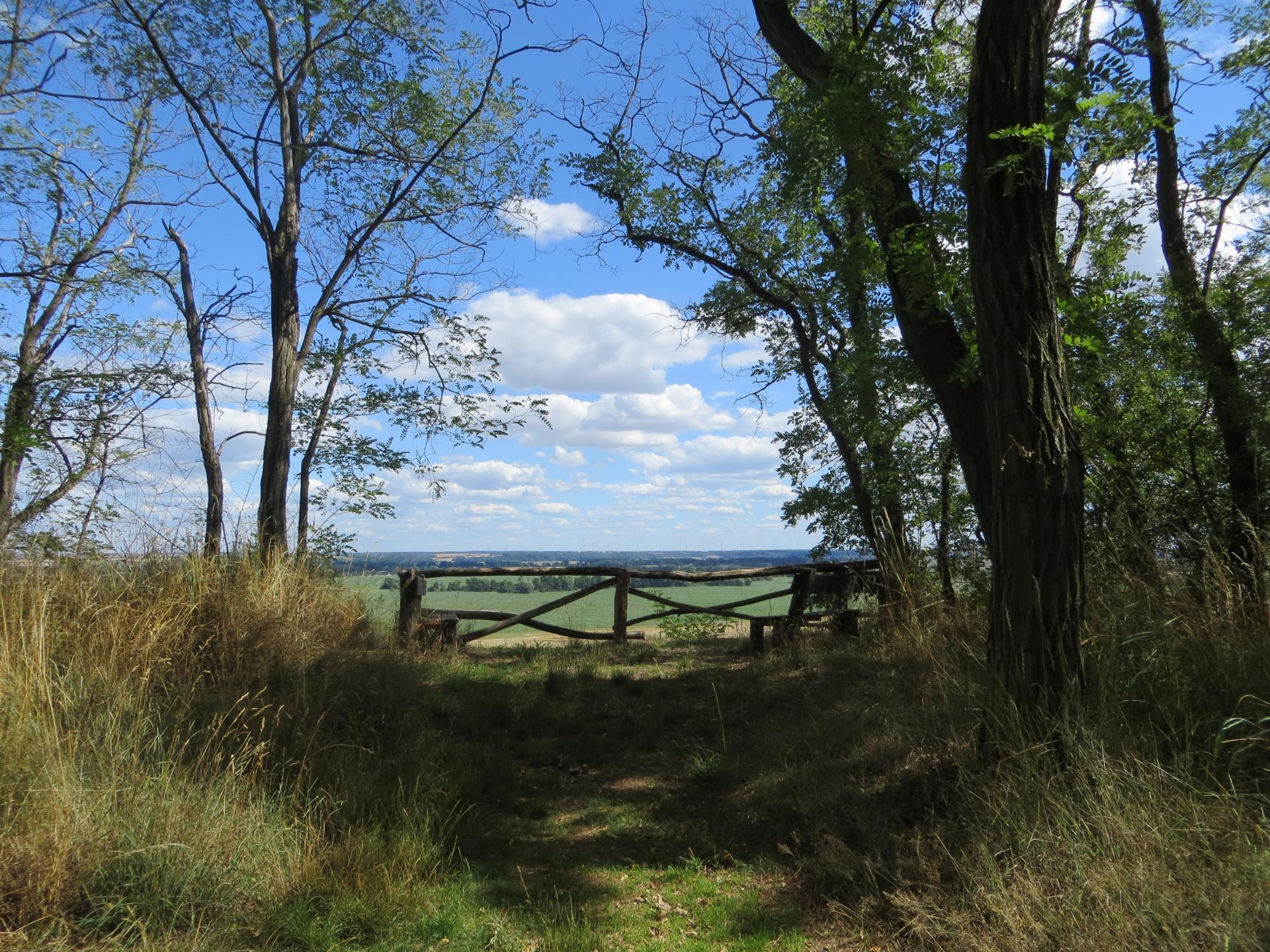 Schöne Aussicht Foto: Info Punkt Lebus