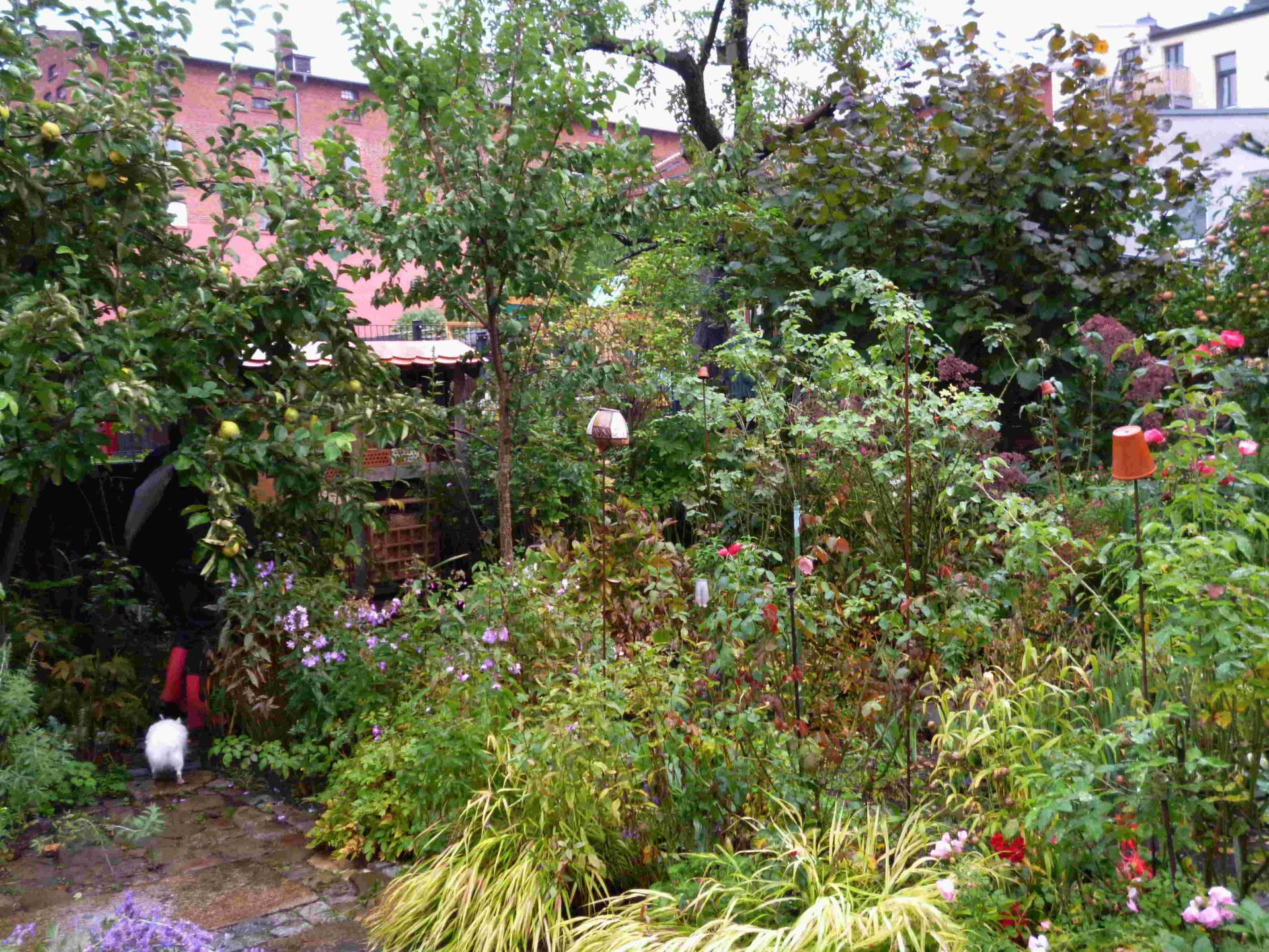 Offene Gartenpfporte 26-09-2020 Bild 15