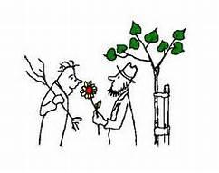 Pflanzentauschbörse Logo