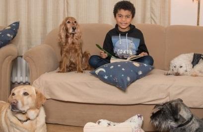 Hundebesuchsdienst6