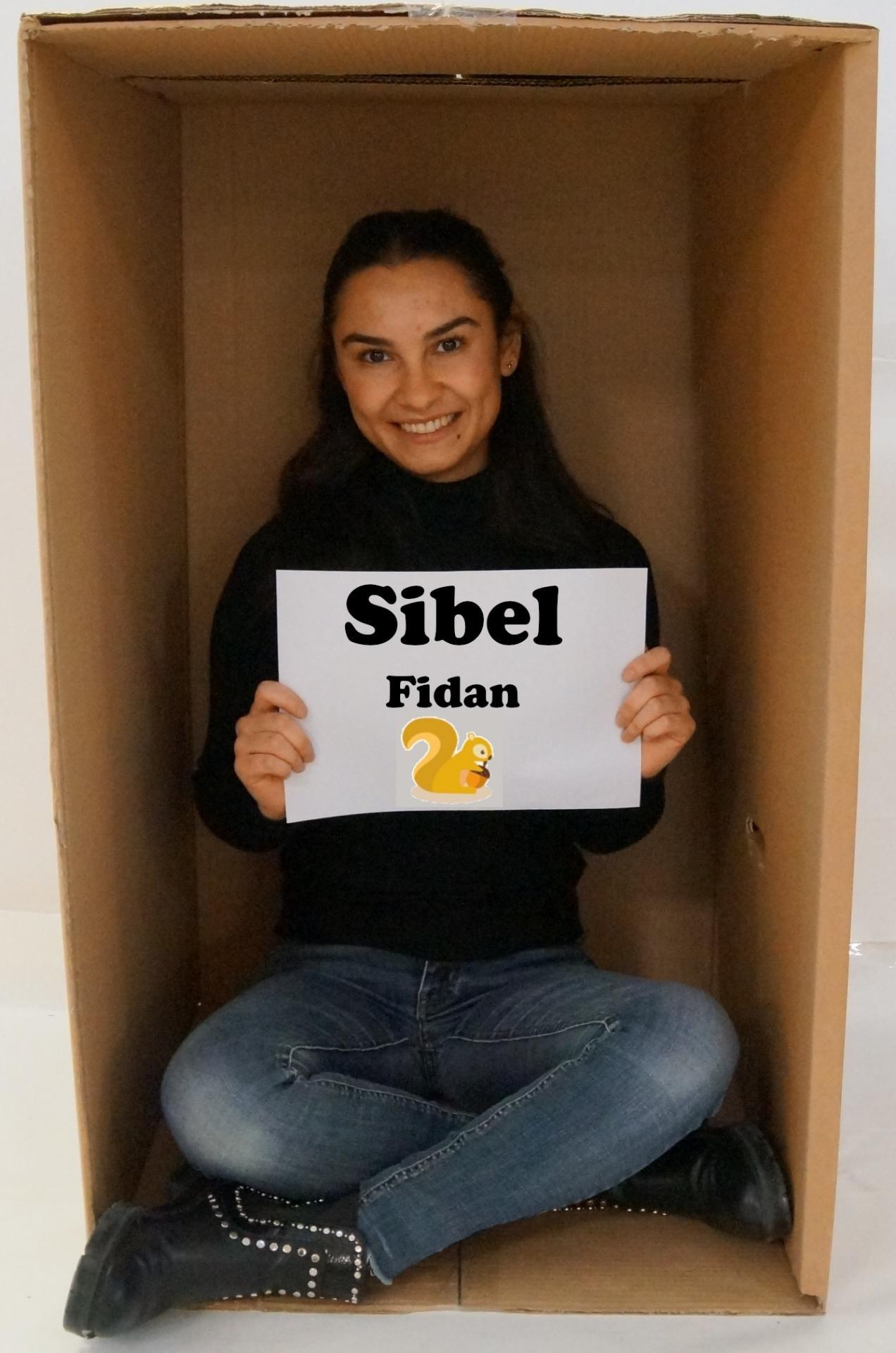 Sibel Fidan