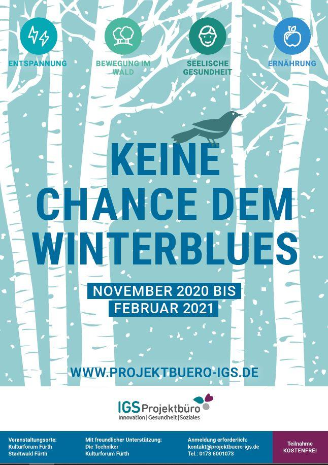 Winterblues-Poster