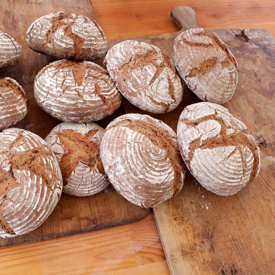 Brot aus dem Holzbackofen Foto- Museum OSL- Ehrhardt