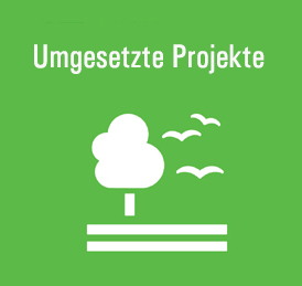 Nachhaltige Projekte