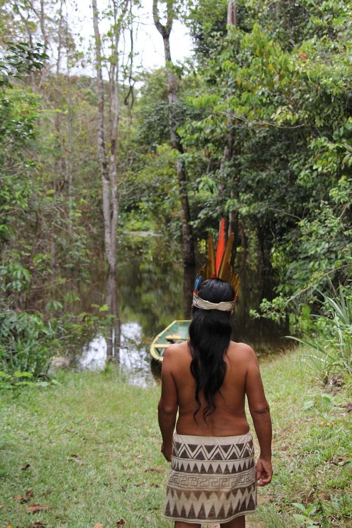 Amazonas_deb-dowd-pqI82H0rhDA-unsplash_klein